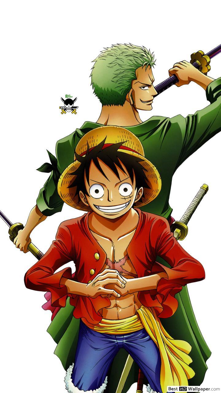 Monkey D Luffy And Zoro - HD Wallpaper