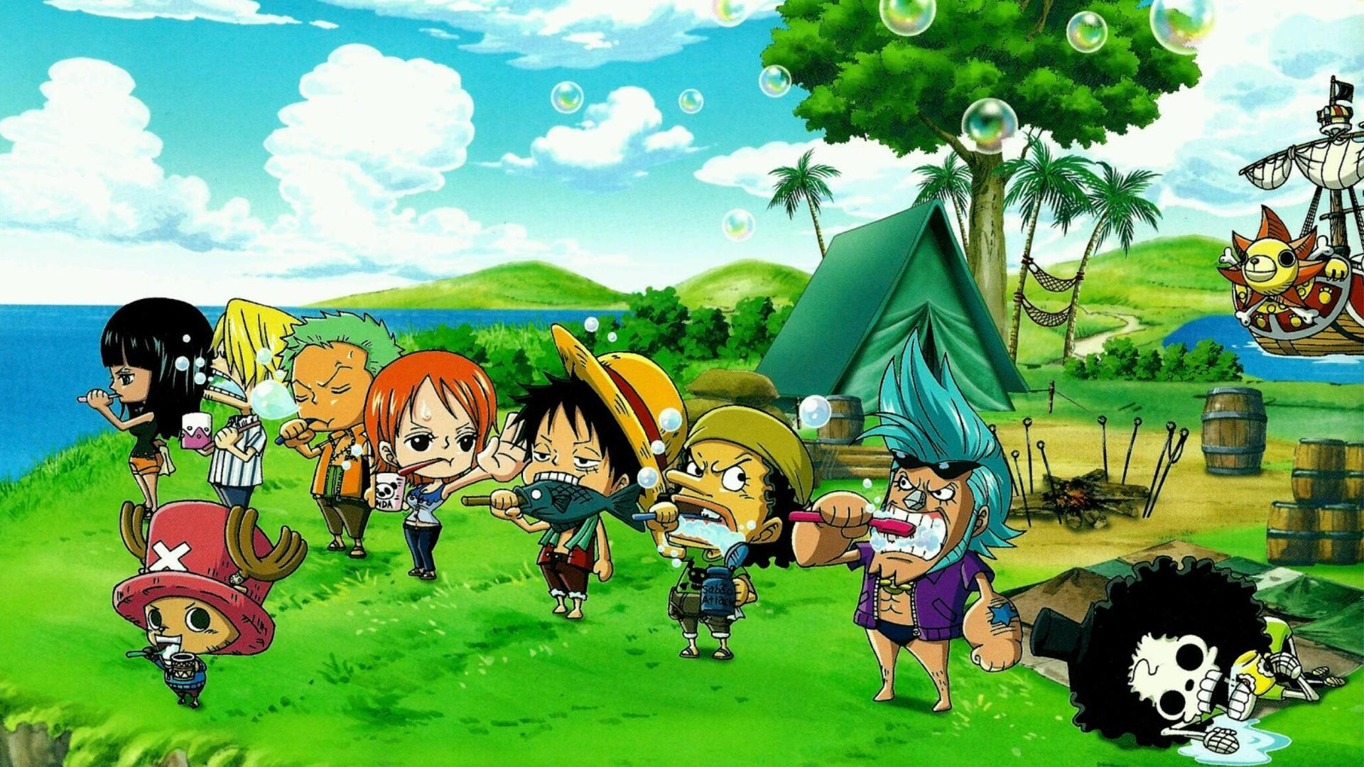 One Piece Laptop Wallpaper 1920x1080 Wallpaper Teahub Io