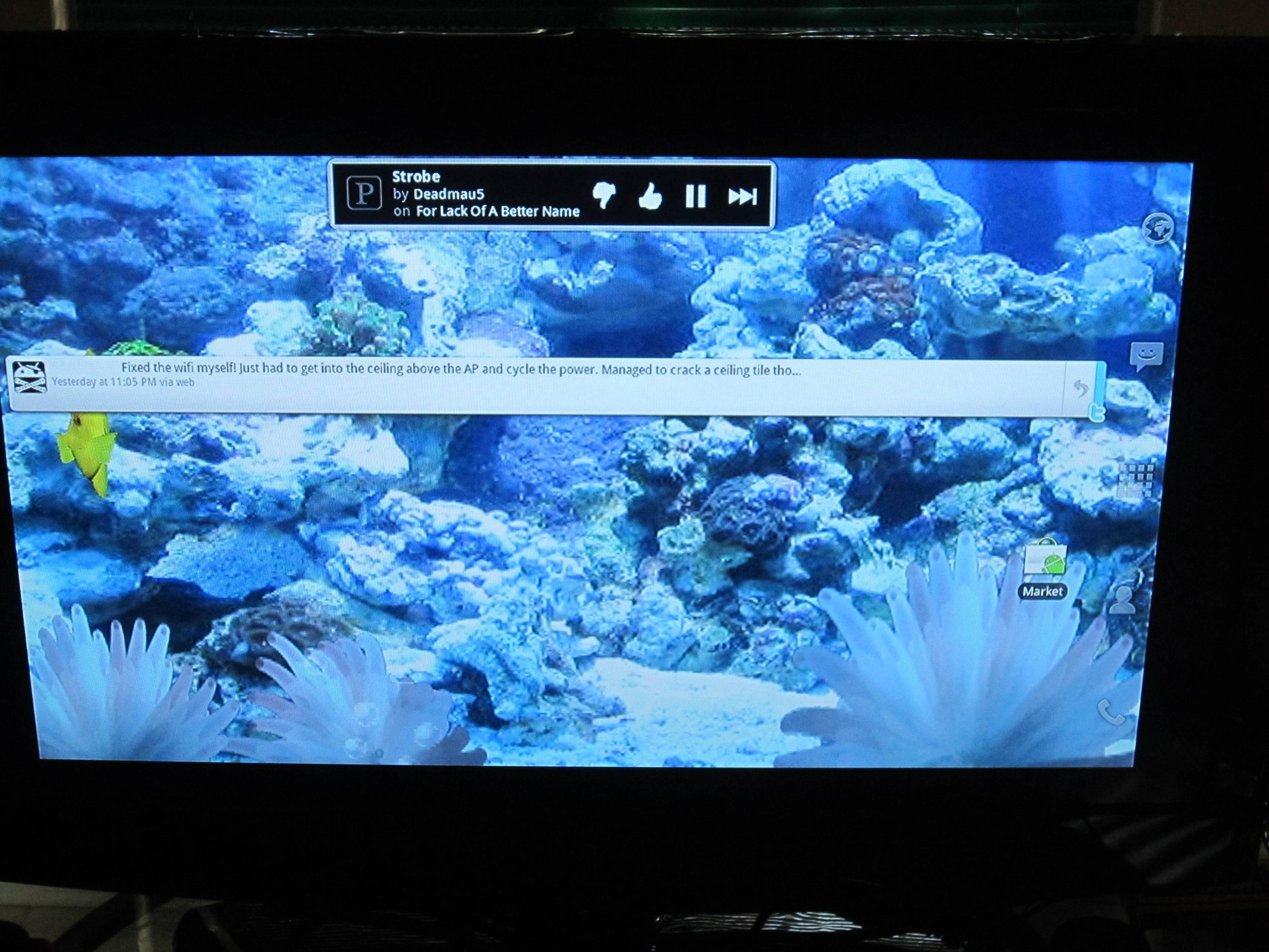 Google Tv Live Wallpapers Live Wallpapers For Android 2 2 3110x2333 Wallpaper Teahub Io