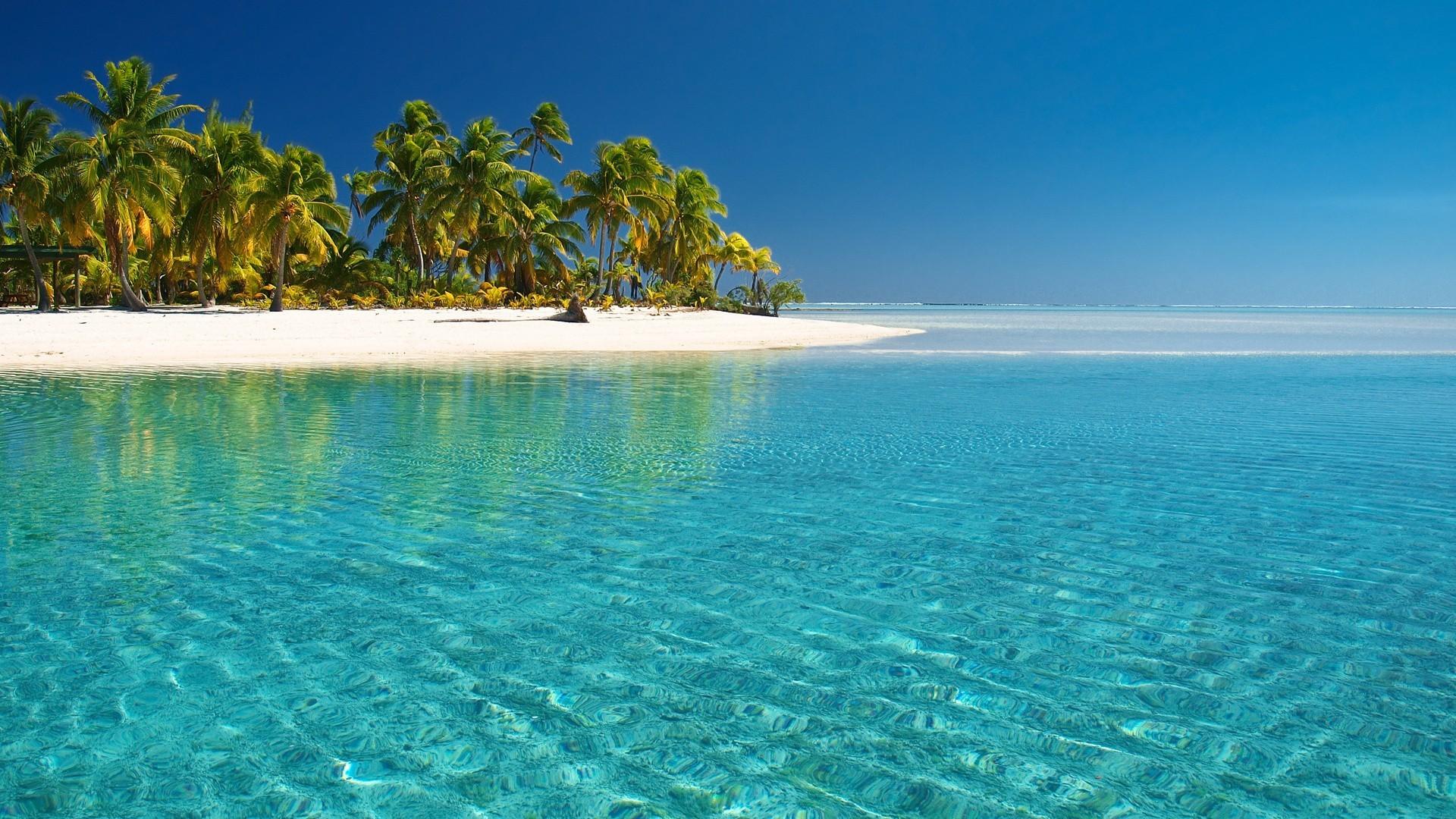 Funny Summer Wallpaper Desktop - Tropical Beach Desktop Background - HD Wallpaper