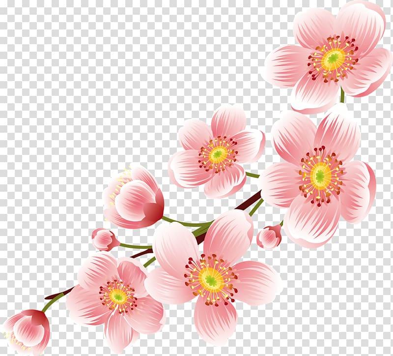 Flower Desktop Floral Design , Peach Flower Transparent - Transparent Background Flowers Png - HD Wallpaper