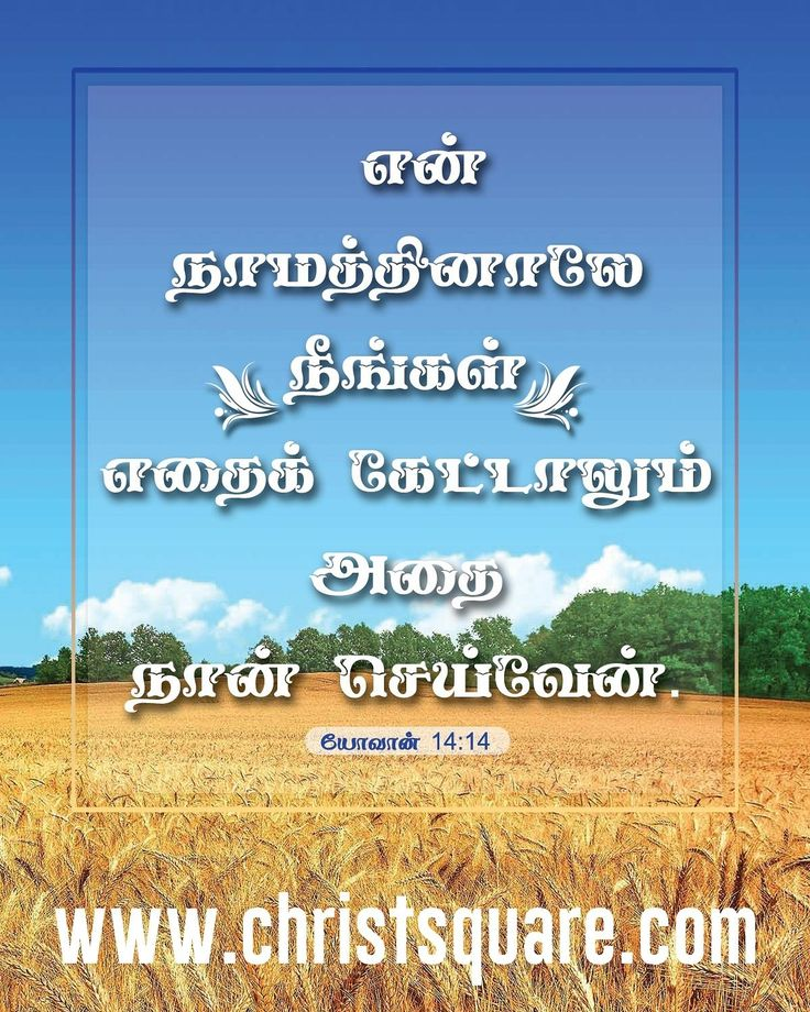 Tamil Strength Quotes On Bible Wallpapers, Christian - Bible Quotes In Tamil - HD Wallpaper