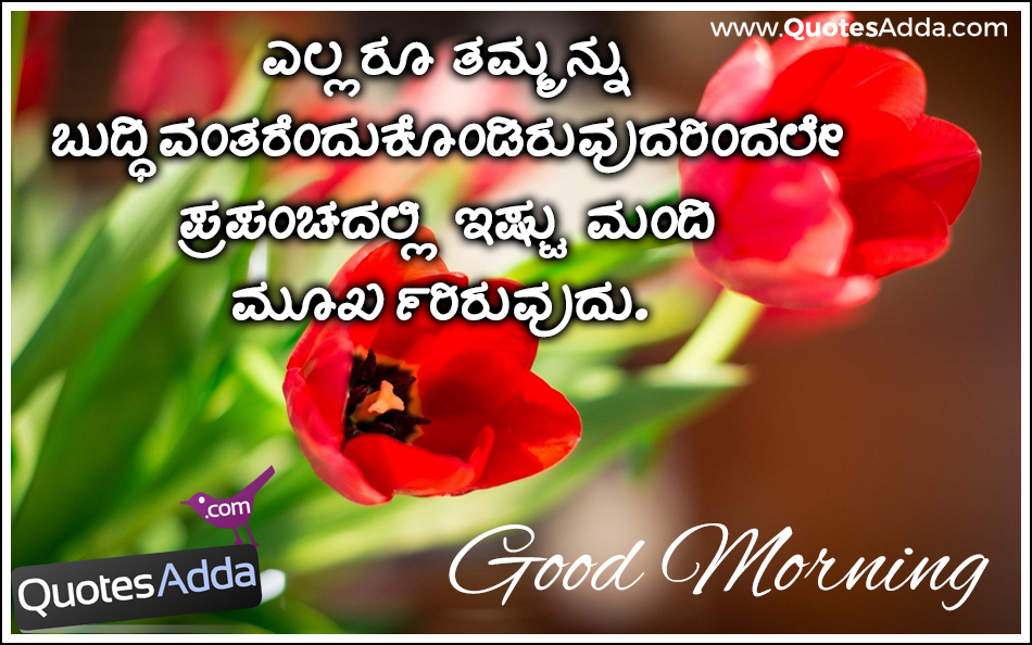 Kannada Wishes Good Morning Images Tulip 950x594 Wallpaper Teahub Io These kannada birthday wishes are adequate to wish your friends in their native language. kannada wishes good morning images