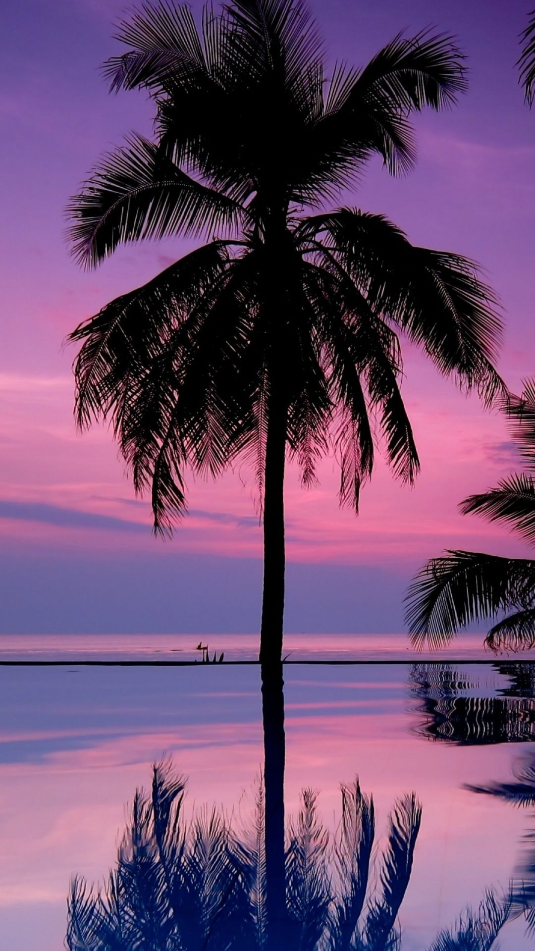 Iphone Background Palm Trees - HD Wallpaper