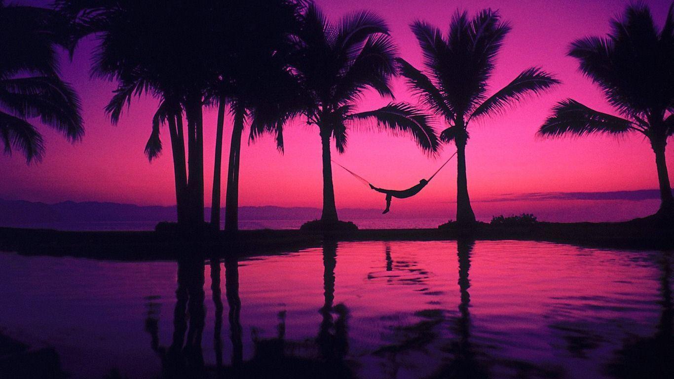 Beach Palm Tree Hd Desktop Wallpaper - Sunset Palm Trees Wallpaper Hd - HD Wallpaper