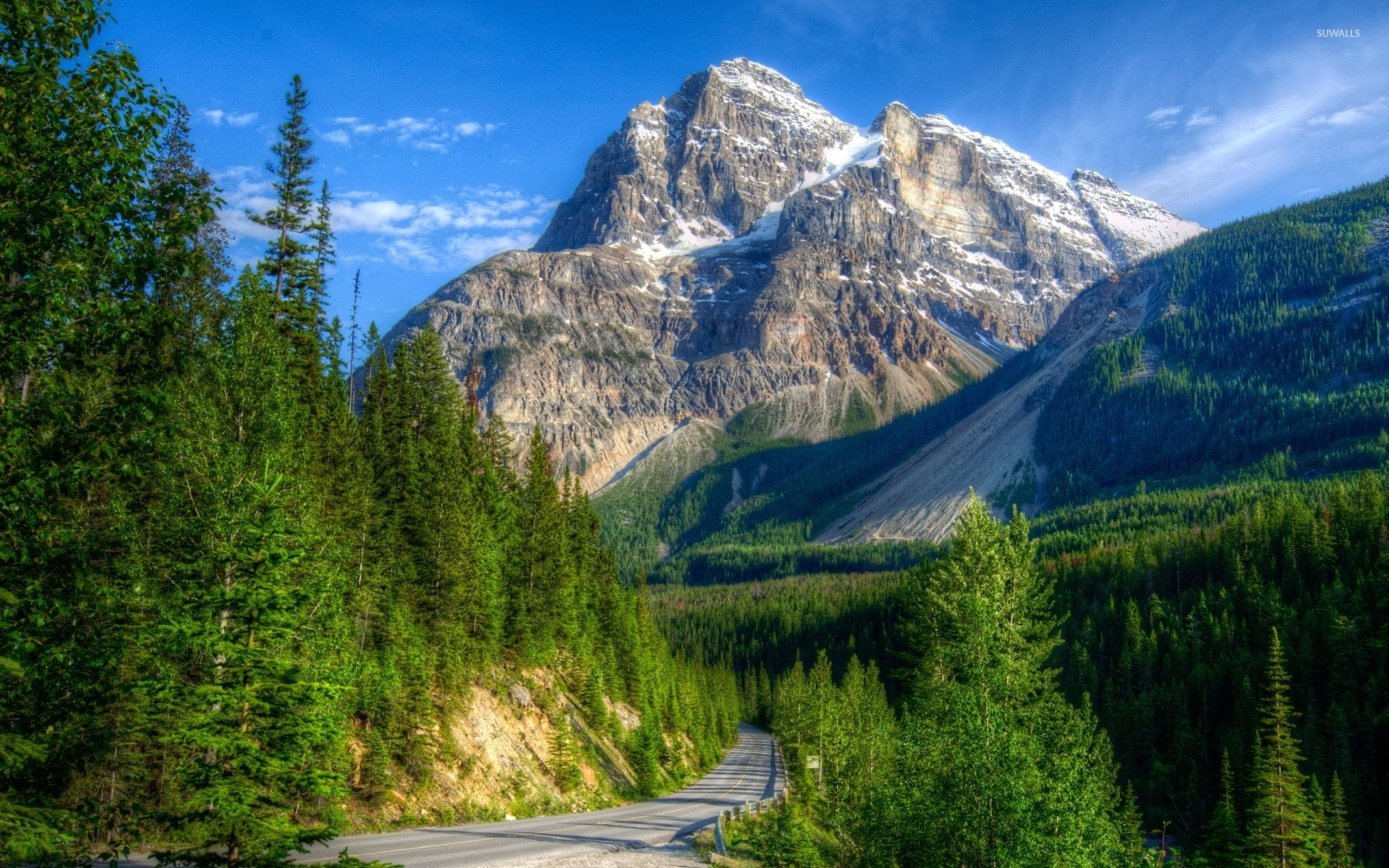 Mountain Forest Beautiful Mountain Landscapes - HD Wallpaper