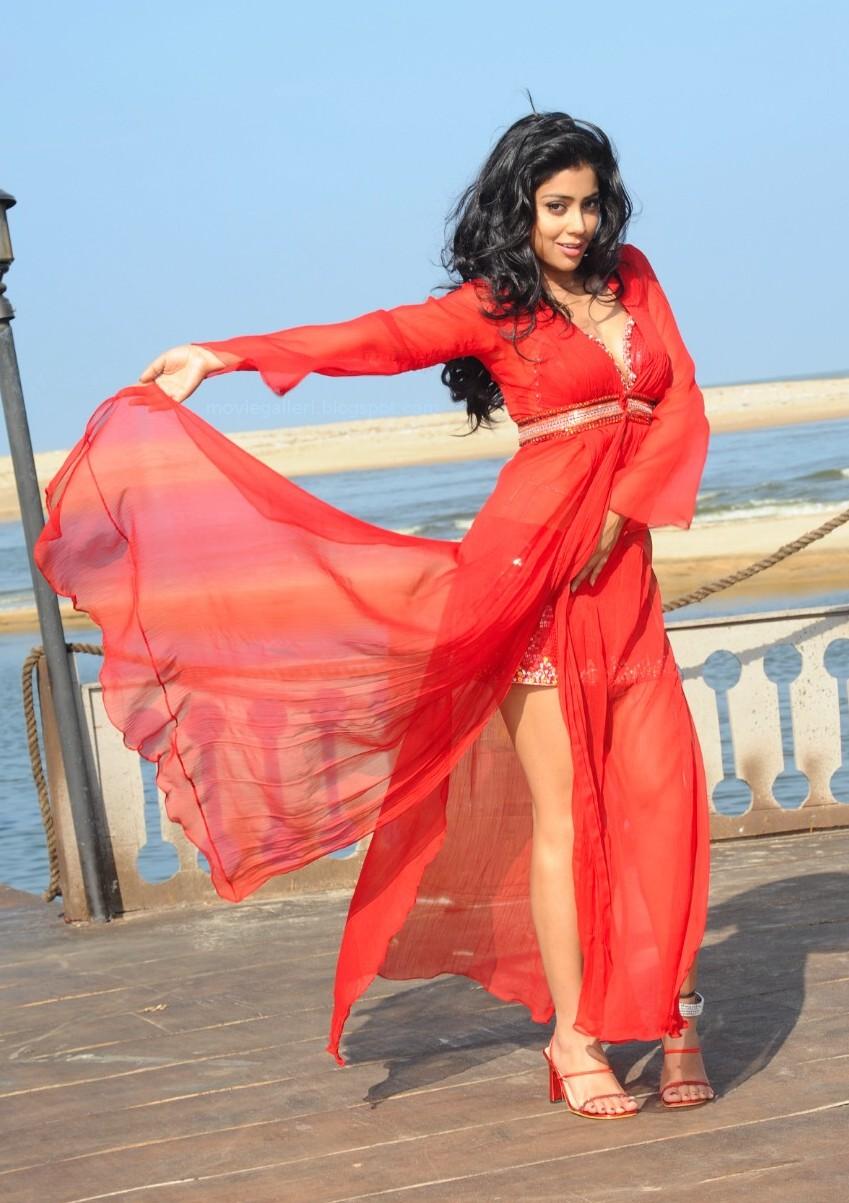 Wallpapers, Hot South Indian Actress, Sexy Shriya, - Shriya Saran - HD Wallpaper