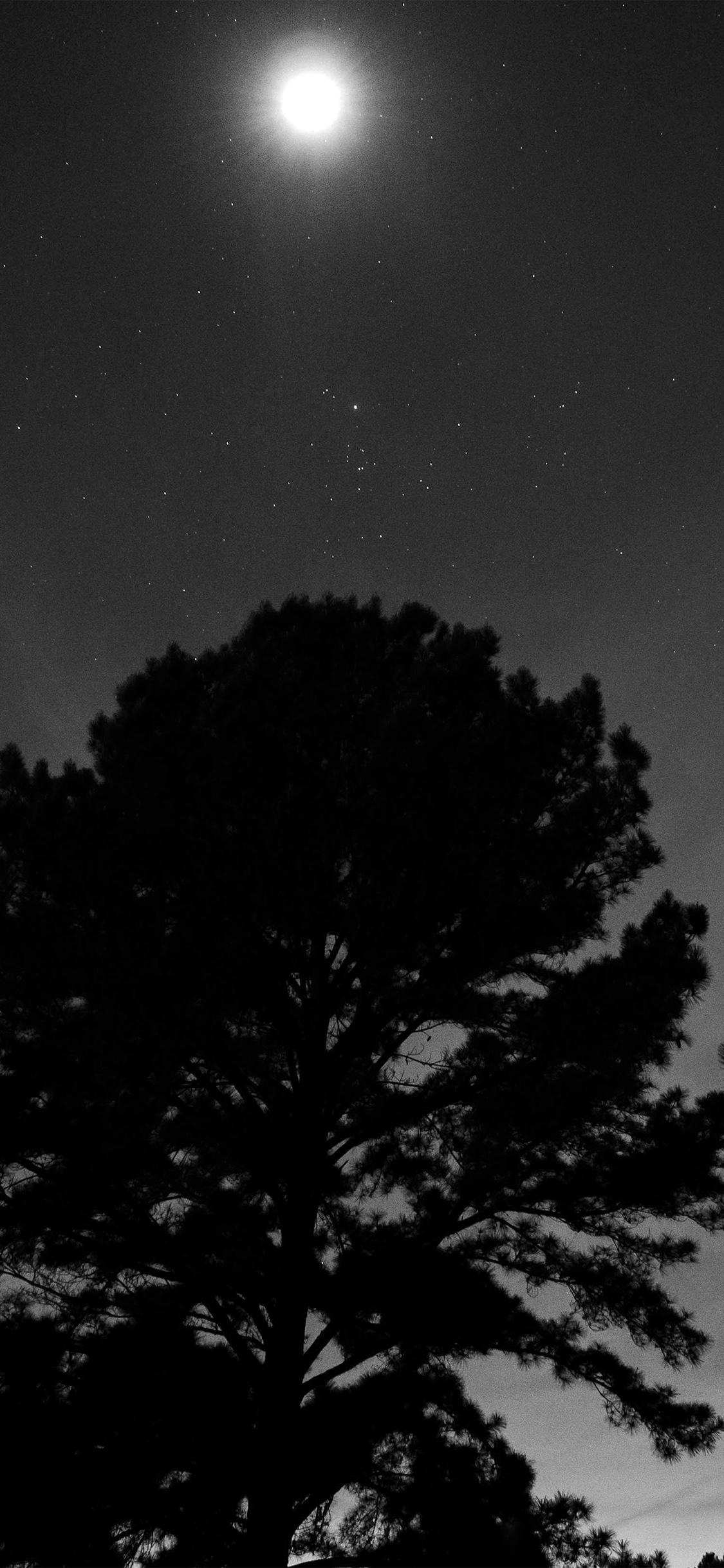 Com Apple Iphone Wallpaper Nj69 One Star Shine Night - Dark Blue Night Sky Wallpaper Iphone - HD Wallpaper