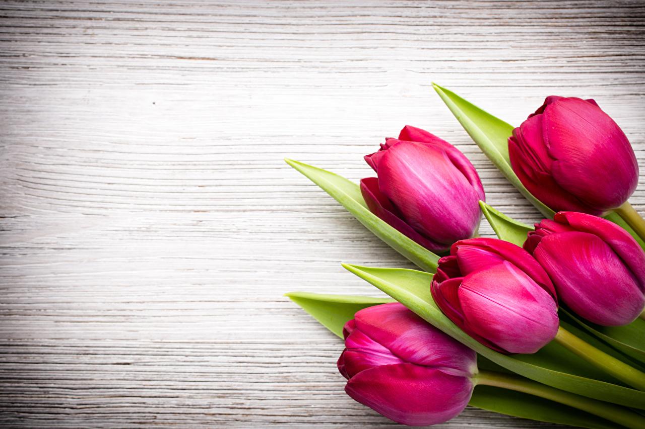 Happy Spring Facebook Cover - HD Wallpaper