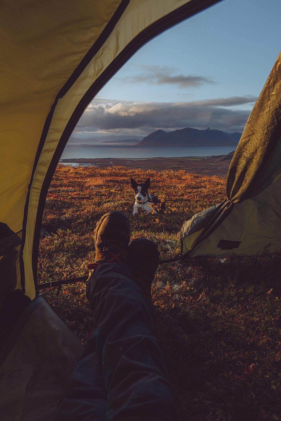 34+ Camping Wallpaper Iphone Hd Pictures