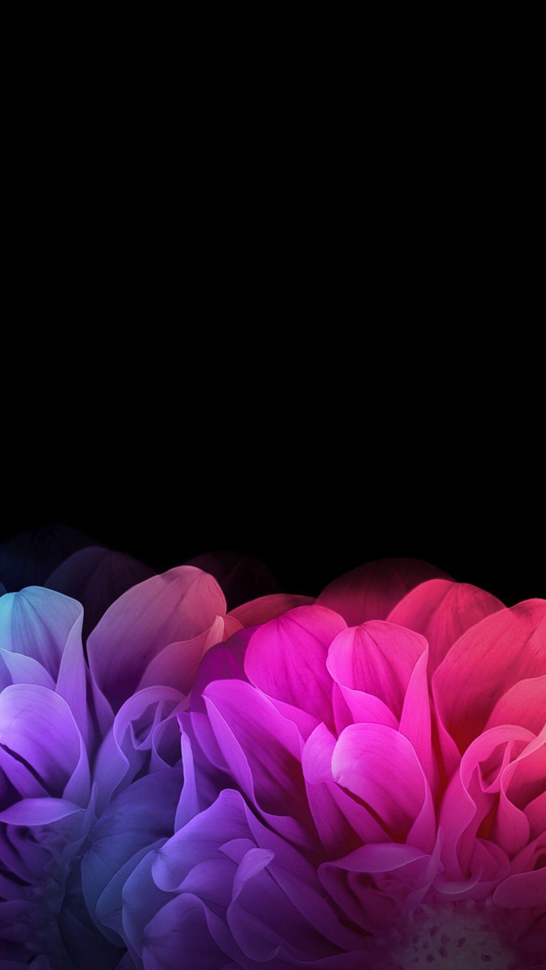 Black Floral Iphone Wallpaper - Iphone Dark Flower Backgrounds - HD Wallpaper