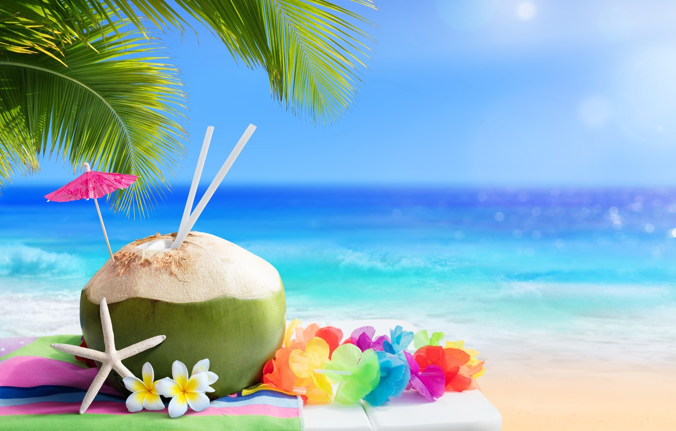 Photo Wallpaper Sand, Sea, Beach, Summer, Stay, Summer, - Coconut On Sea Beach - HD Wallpaper