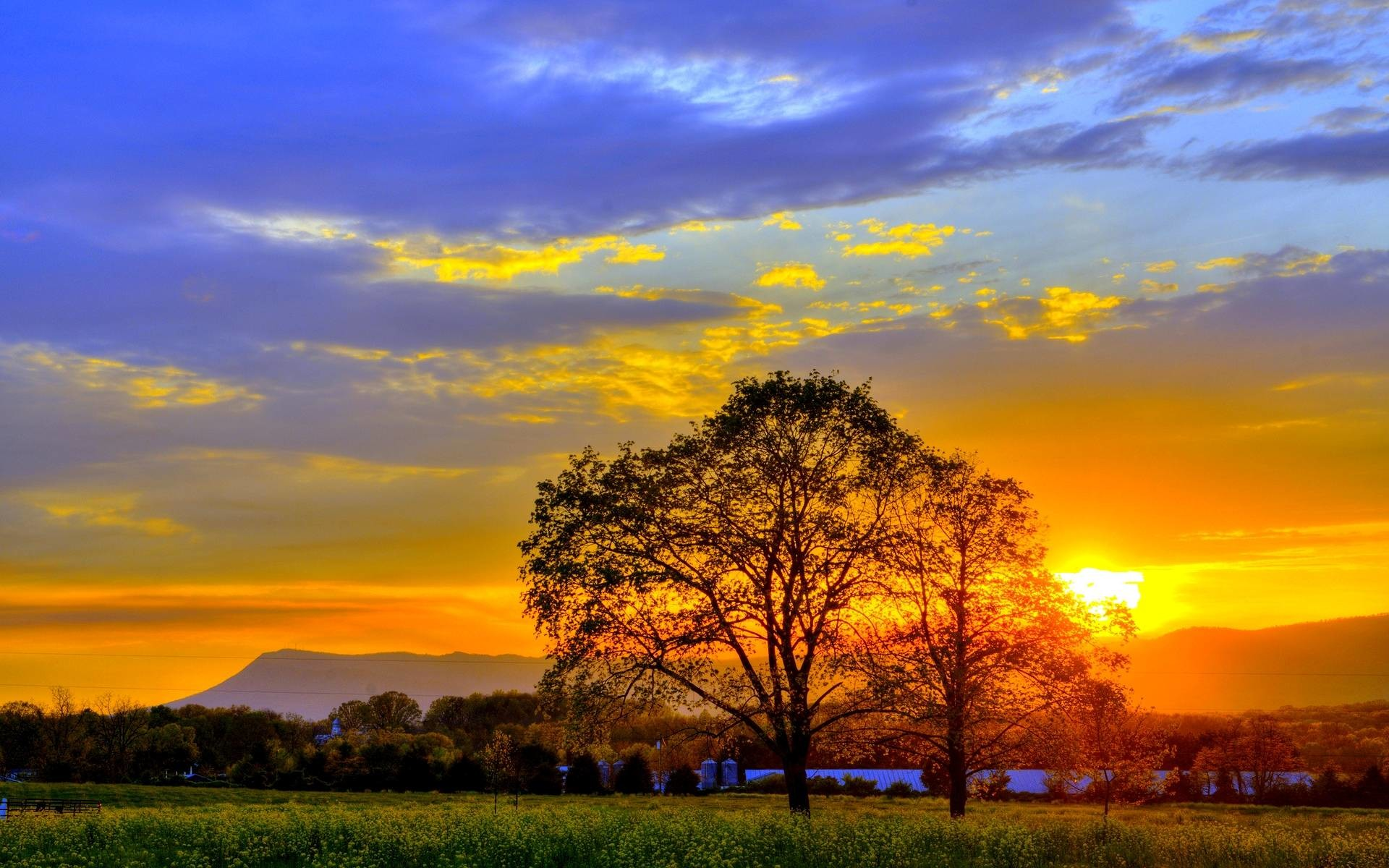 1920x1200 Summer Sunset Photography Hd 1080p 11 Hd Nature Sunset Background Hd 1920x1200 Wallpaper Teahub Io