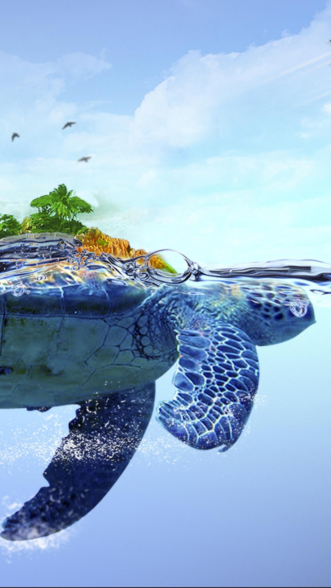 Iphone 7 Turtle Wallpaper Hd 1080x1920 Wallpaper Teahub Io