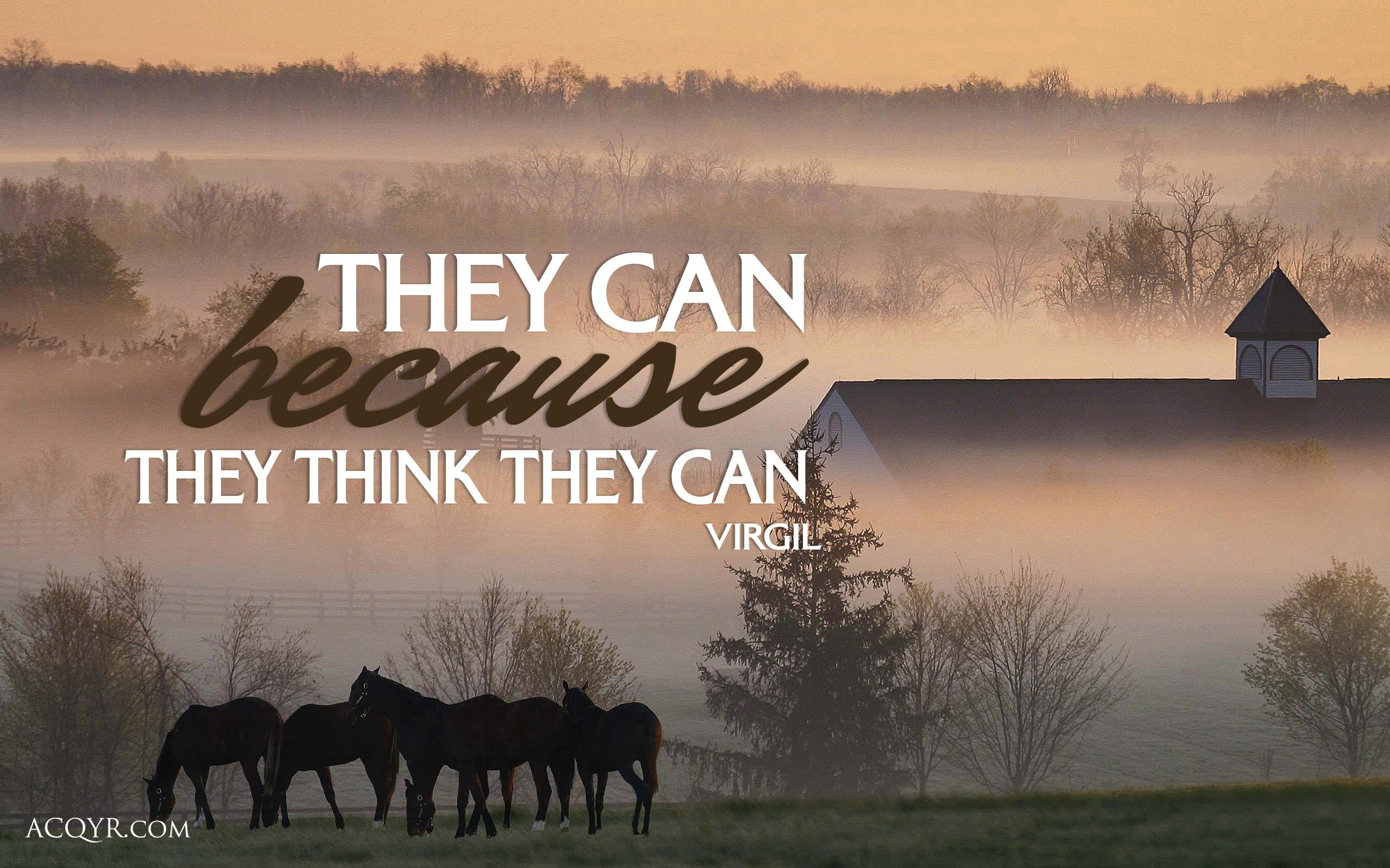 Positive Quotes About Horses 2560x1600 Wallpaper Teahub Io