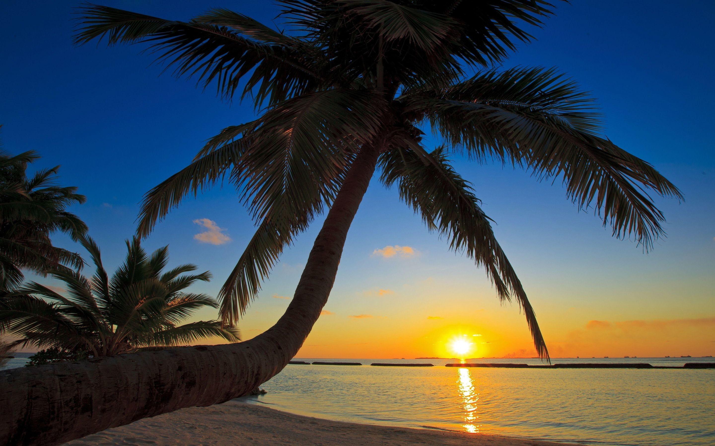 2880x1800, Sunset Beach Wallpaper 2880ã—1800 - Tropical Beach Wallpaper Sunset - HD Wallpaper