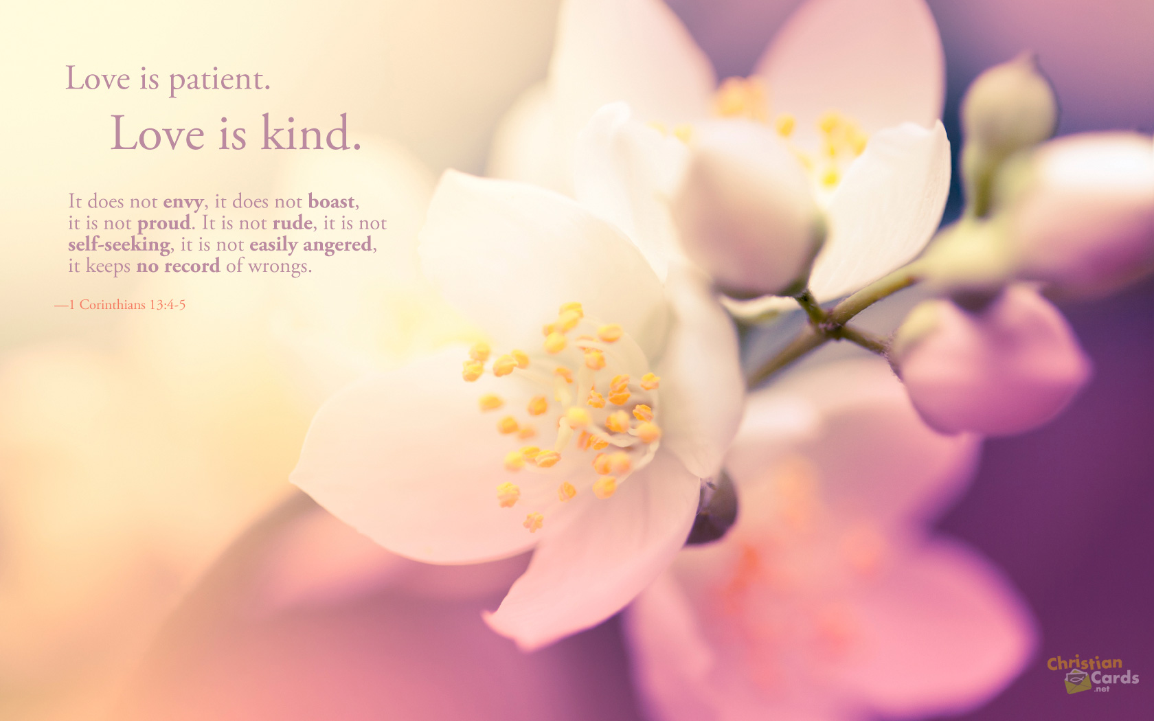 Bible Inspirational Quotes Hd Wallpaper - Christian Inspirational Quotes Wallpaper Hd - HD Wallpaper