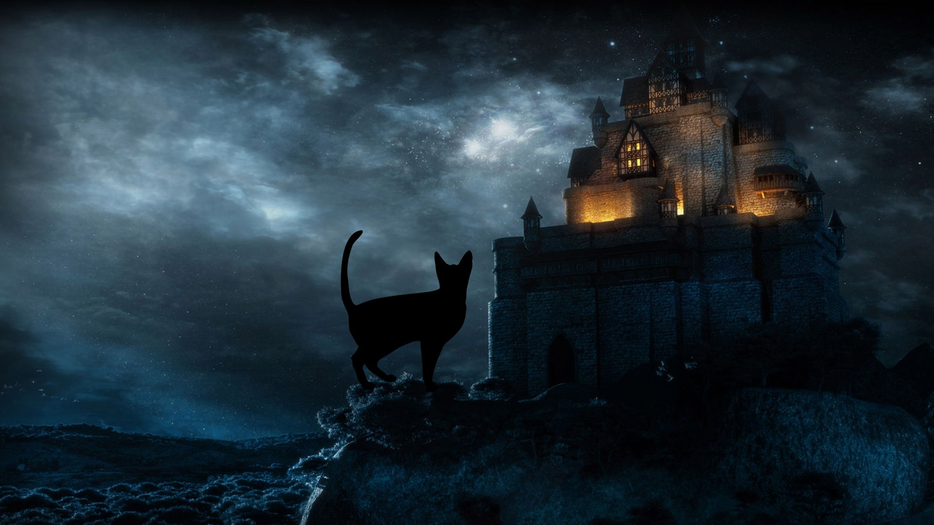 Halloween Black Cat Hd Desktop Wallpapers Halloween Desktop 1920x1080 Wallpaper Teahub Io