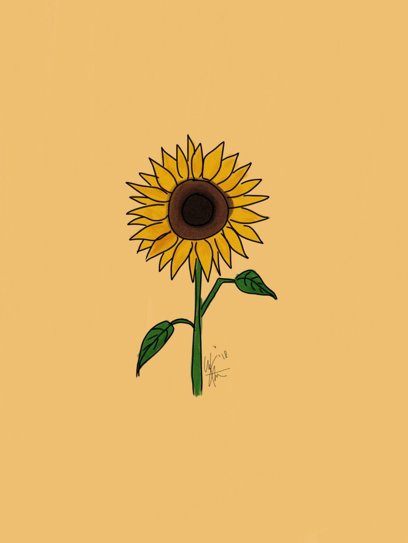 Yellow Aesthetic Sunflowers Hd Wallpapers 1080p 4k Aesthetic Sunflower Background Iphone 1080x1440 Wallpaper Teahub Io