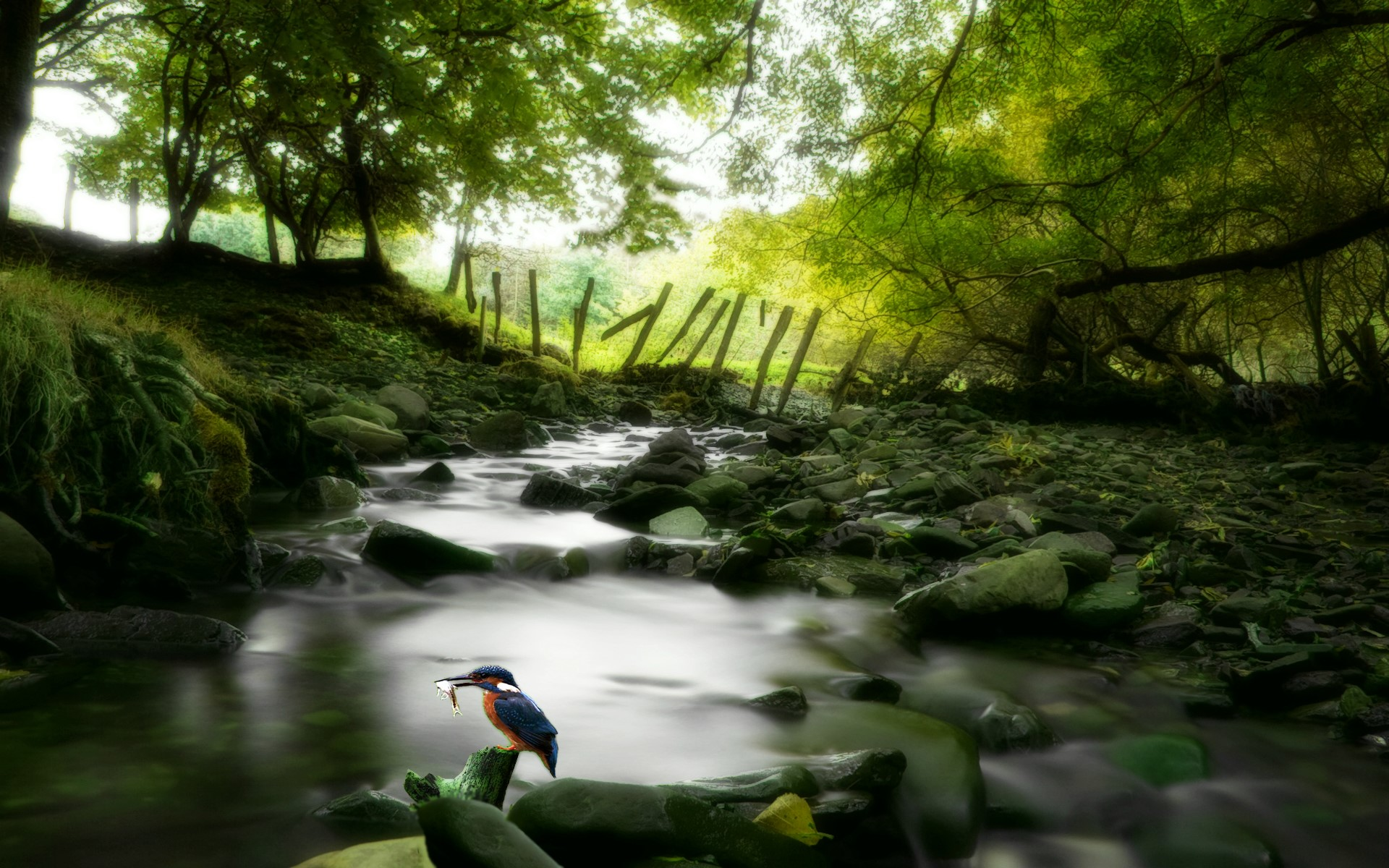 Hd Wallpaper Widescreen Nature - Awesome Wallpapers Nature - HD Wallpaper