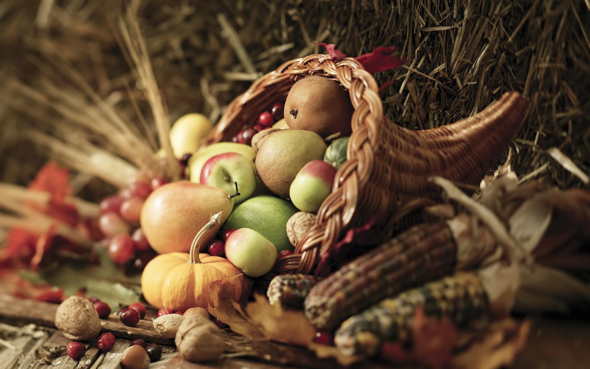 Animated Thanksgiving Desktop Backgrounds Wide Photos - Thanksgiving Cornucopia Background - HD Wallpaper