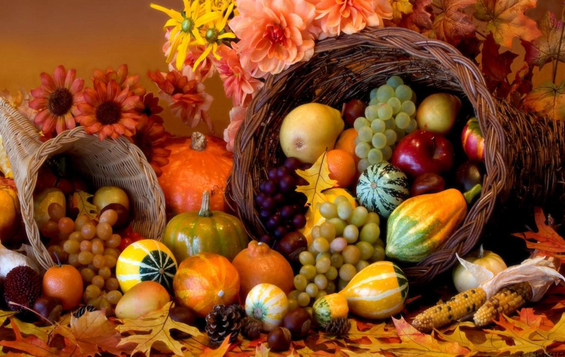 Thanksgiving Holiday Autumn Turkey Wallpaper - Happy Thanksgiving Cornucopia - HD Wallpaper
