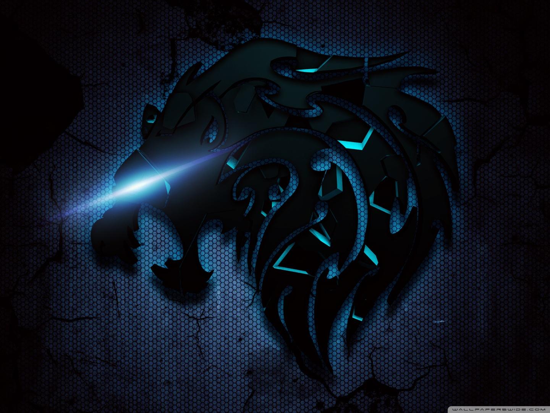 Hd Wallpapers Black Lion 1440x1080 Wallpaper Teahub Io