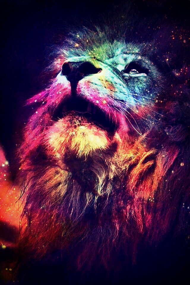 Lion, Galaxy, And Animal Image - Colorful Lion - HD Wallpaper