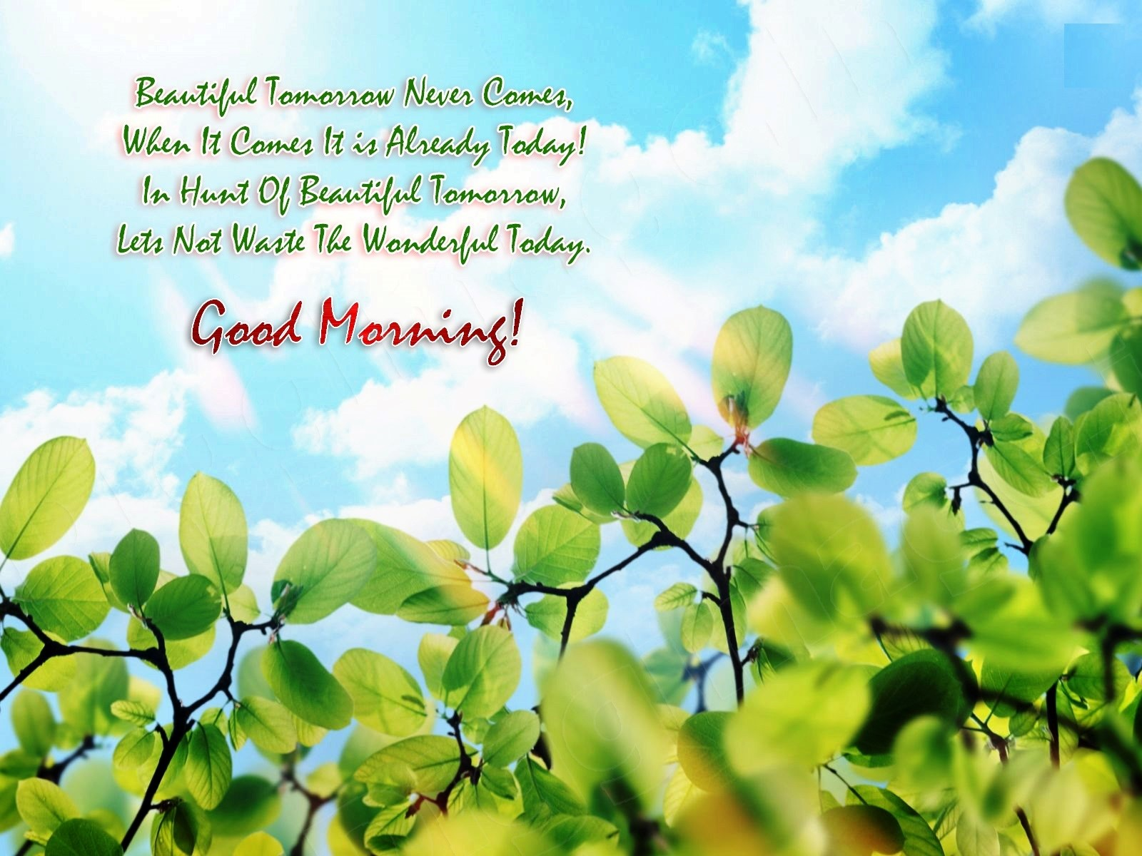 Good Morning Images New Hd Quotes - HD Wallpaper