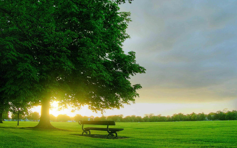 Natural Pc Hd Backgrounds Beautiful Nature Wallpaper For Desktop Free Download 2880x1800 Wallpaper Teahub Io