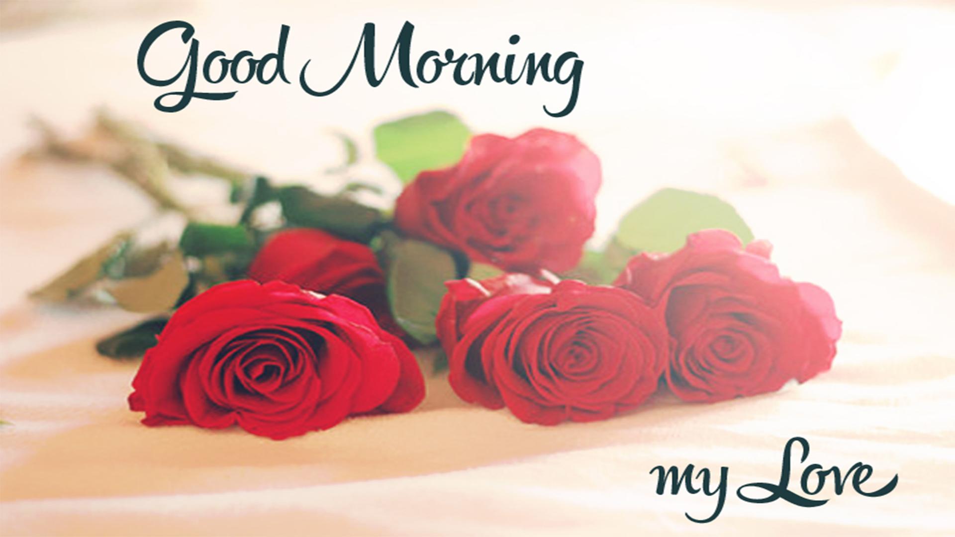 Good Morning New Photo 2018 Impremedia - Love Good Morning Wish - HD Wallpaper