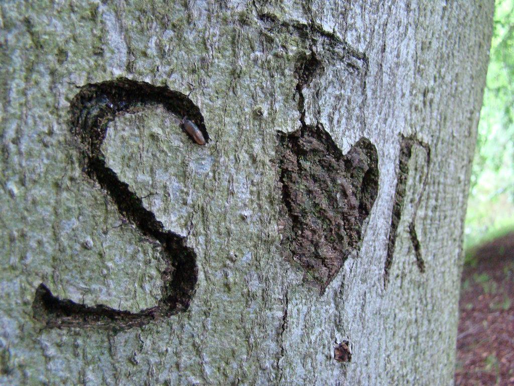 R Love S Name - HD Wallpaper