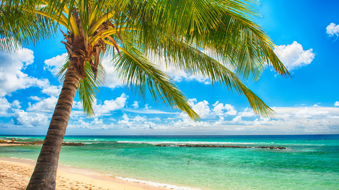Vacation, Paradise, Summer, Sea, Tropical, Sunshine, - Tropical Beach A3 Size - HD Wallpaper