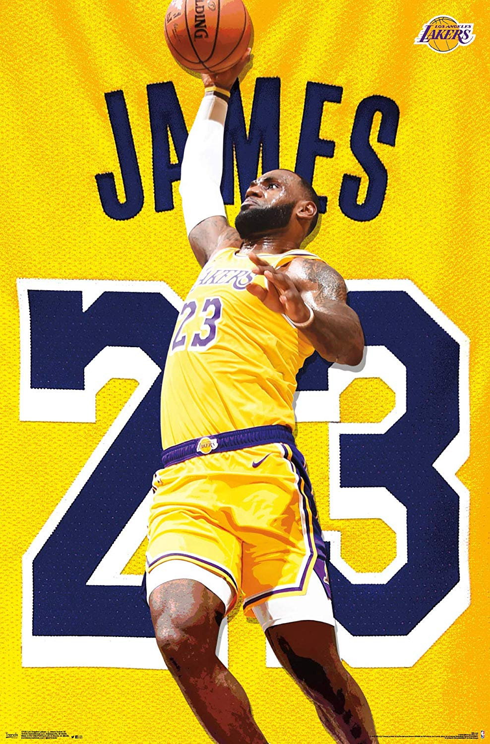 Lebron James Lakers Coloring Pages 988x1500 Wallpaper Teahub Io