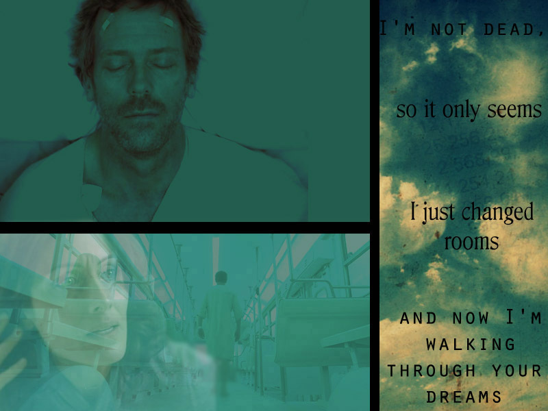 Huddy - House Md Wilson's Heart Quotes - HD Wallpaper