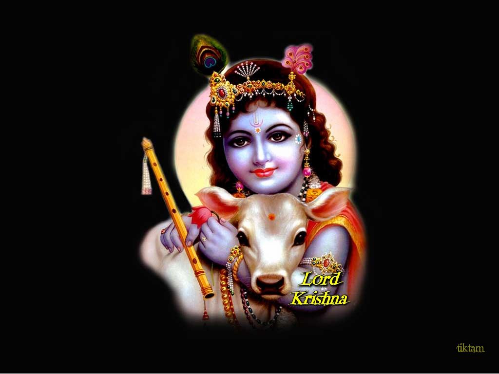 Baby Kanha Wallpaper Sri Krishna Janmashtami 2018 1024x768 Wallpaper Teahub Io