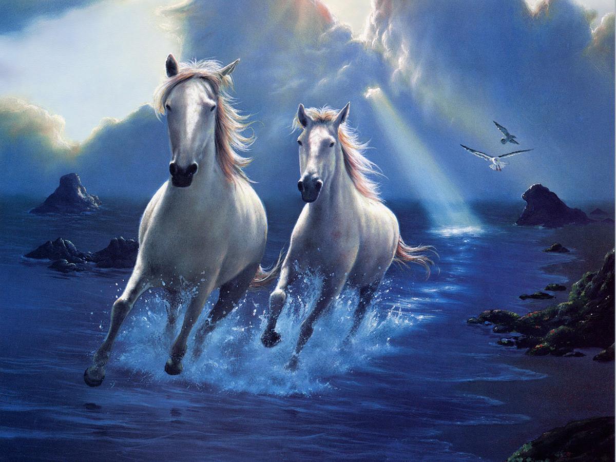 Running Horse Wallpaper Hd 1200x900 Wallpaper Teahub Io