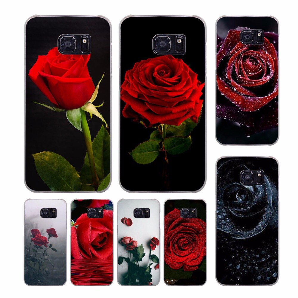 Rose Wallpaper Samsung S8 Plus 1000x1000 Wallpaper Teahub Io