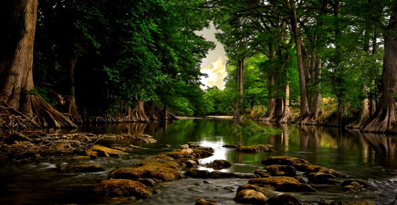 Cool Nature Photos Nature Wallpaper For Samsung Hd River In The Forest 1371x709 Wallpaper Teahub Io