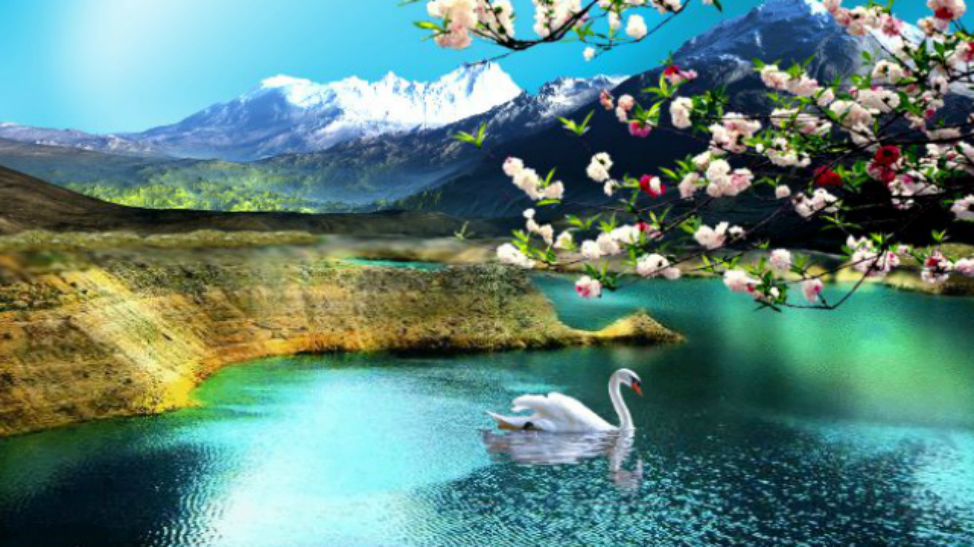 Hd Nature Wallpapers, Flowers, Cute Desktop Images, - Nature Wallpaper For Windows 10 - HD Wallpaper