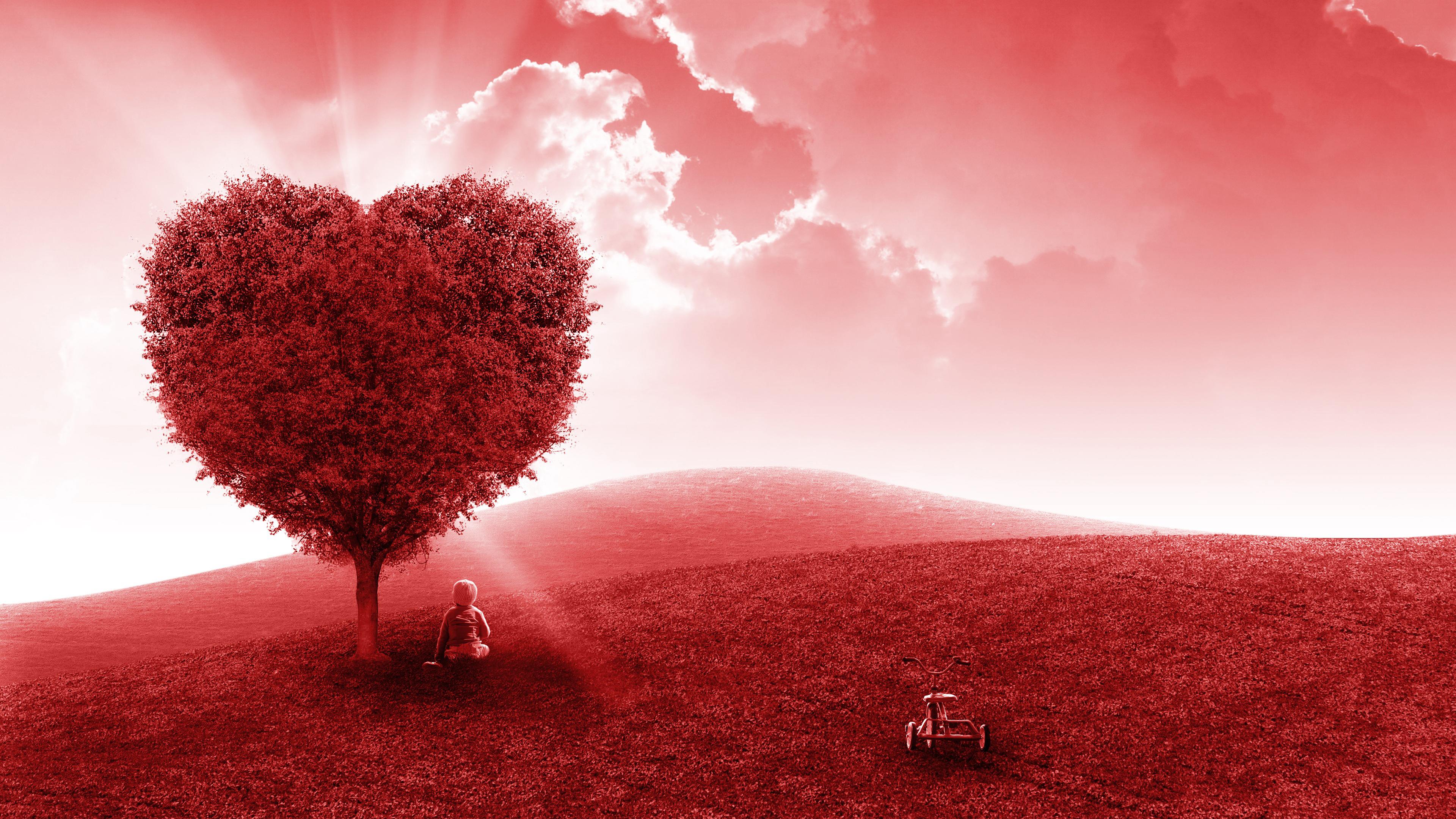 Romantic Nature Wallpaper Resolution - Love Cute Wallpapers Landscape - HD Wallpaper
