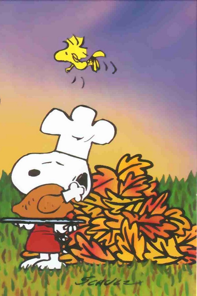 Charlie Brown Thanksgiving Phone Background - HD Wallpaper