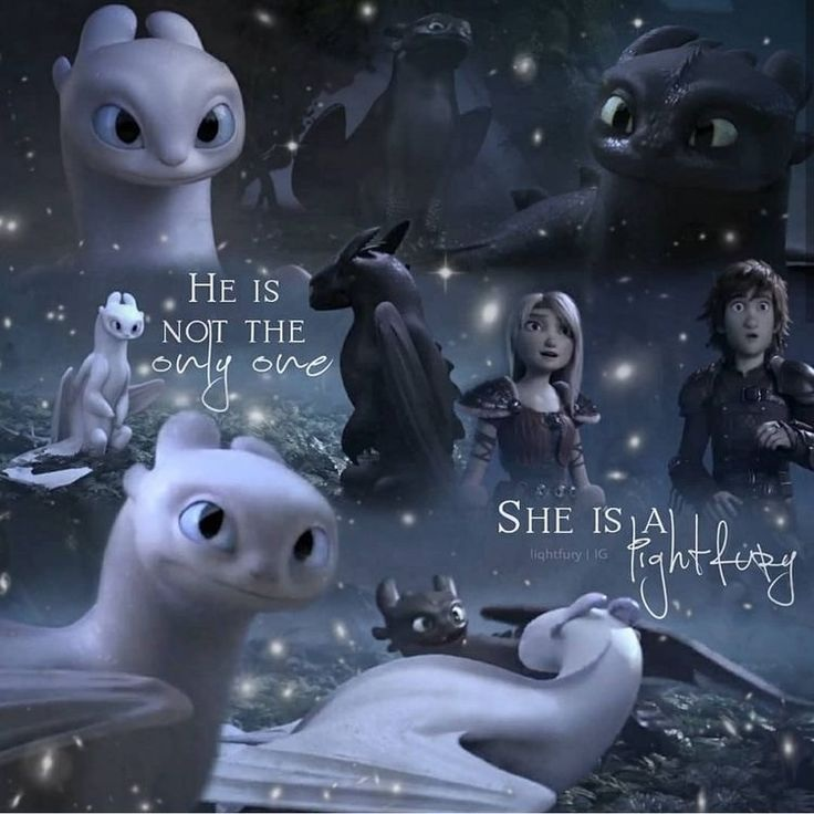 Toothless, How To Train Your Dragon, And Night Fury - Night Fury How To Train Your Dragon 3 Toothless - HD Wallpaper