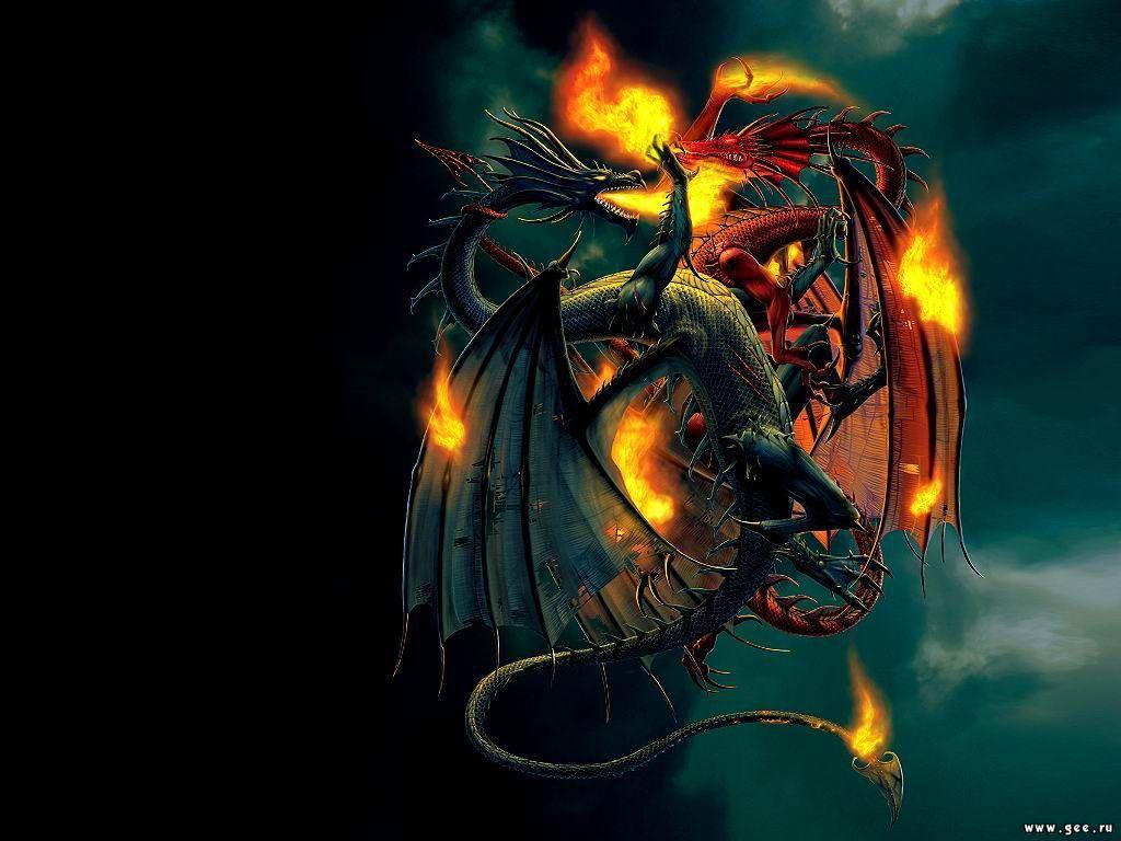 Dragons Wallpapers - Dragons Fighting - HD Wallpaper