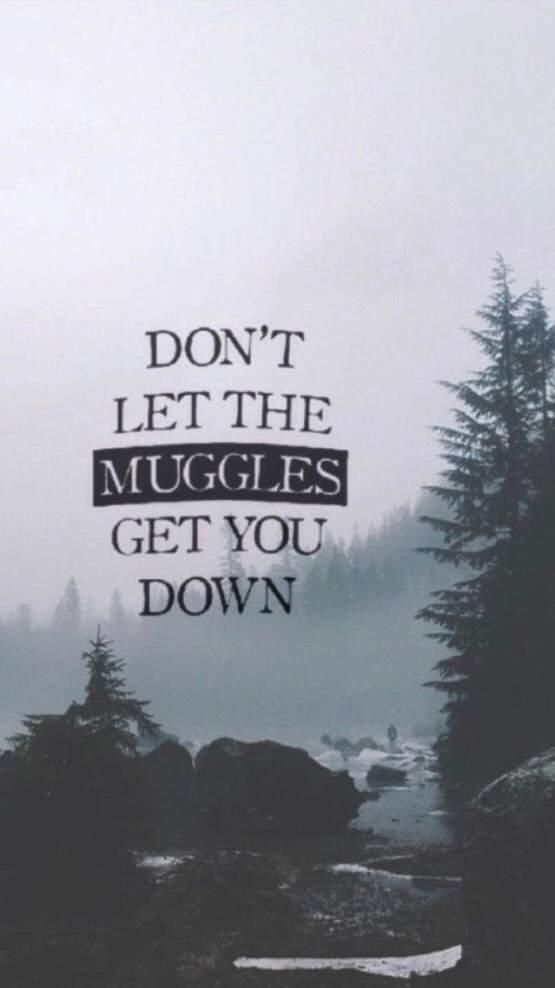 User Uploaded Image - Harry Potter Phone Screen - HD Wallpaper