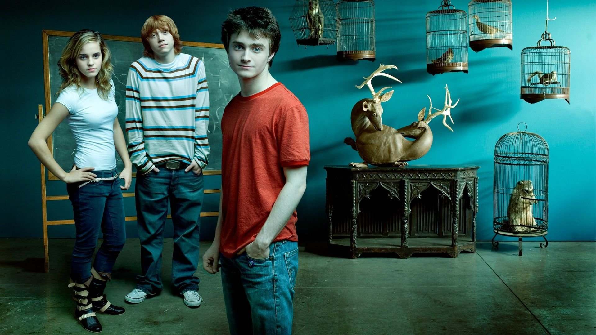Free Harry Potter High Quality Wallpaper Id - Harry Potter Cast Background - HD Wallpaper