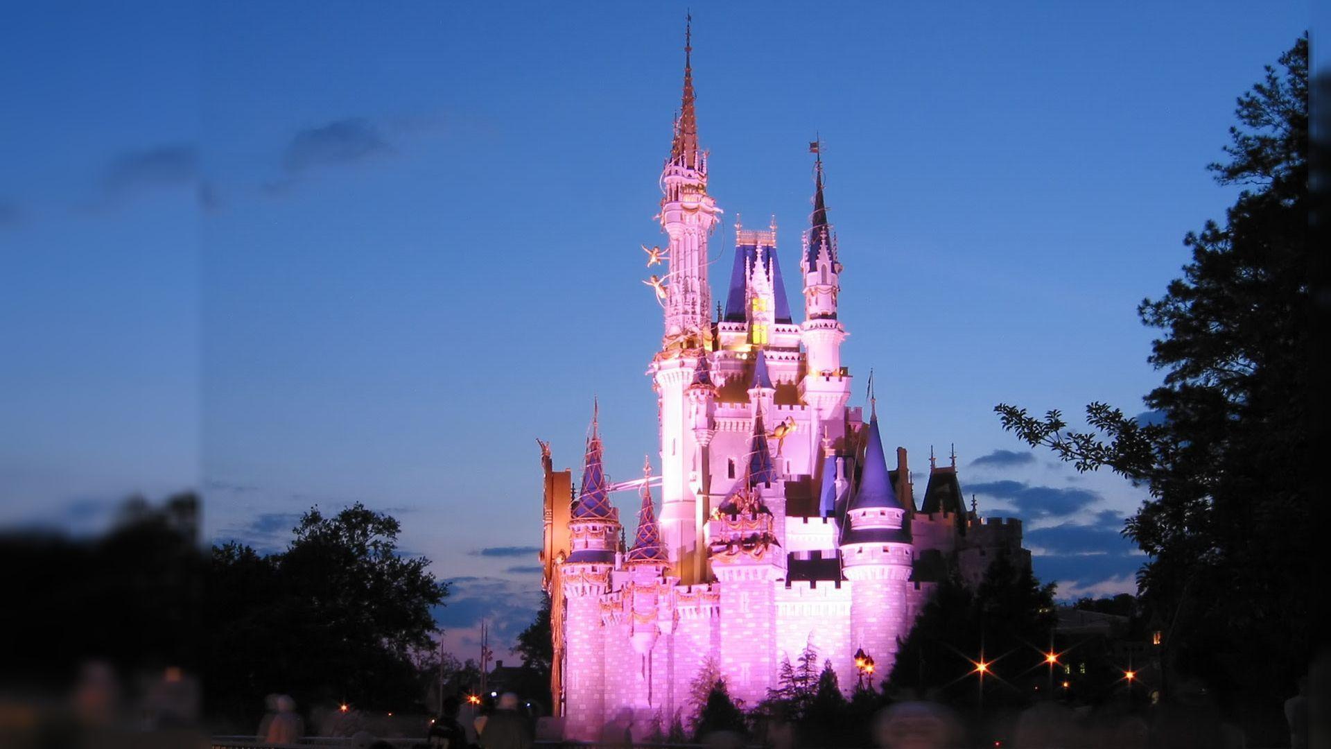 Disney World Castle 1920x1080 Wallpaper Teahub Io