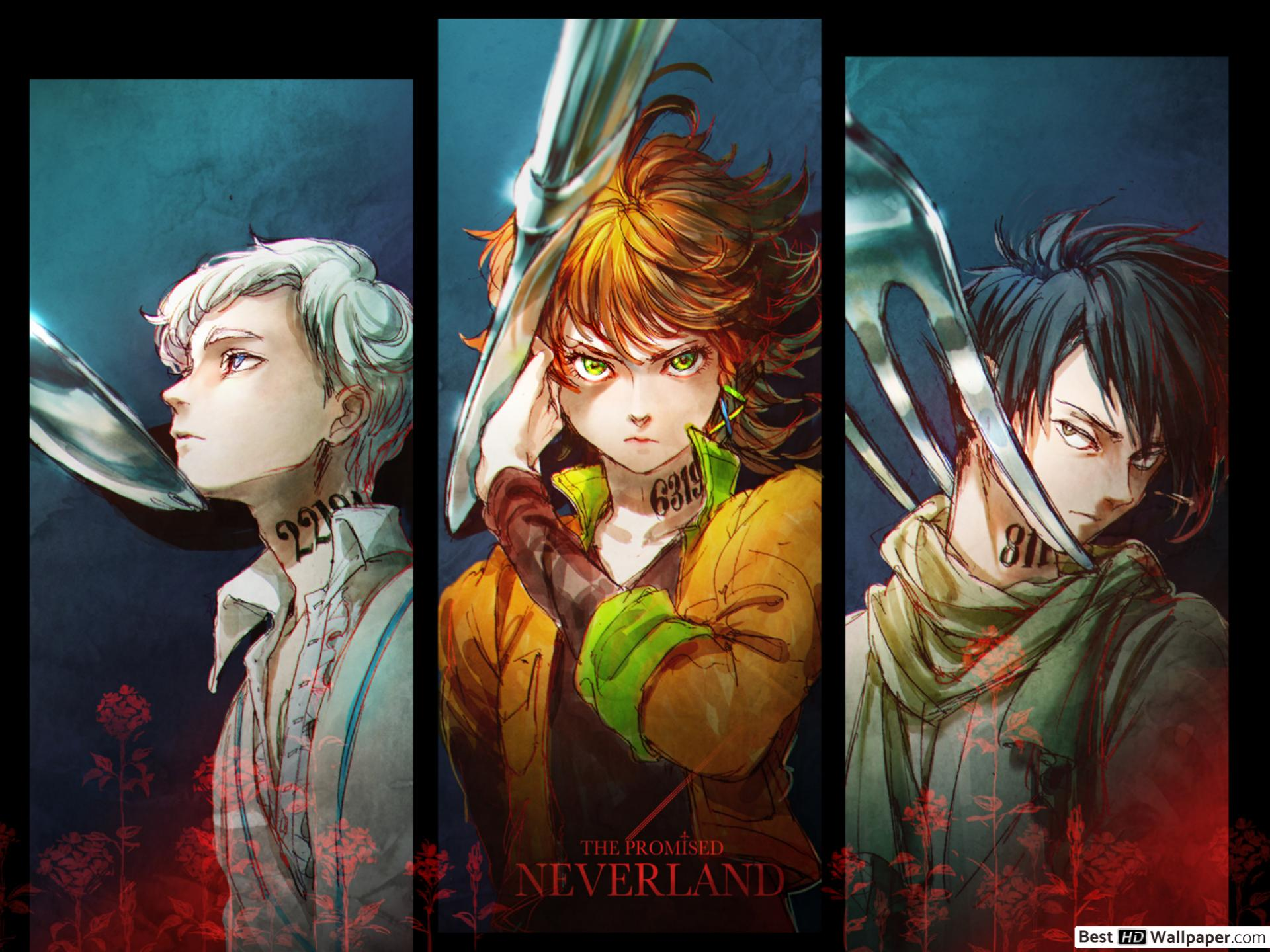 Emma The Promised Neverland 1920x1440 Wallpaper Teahub Io