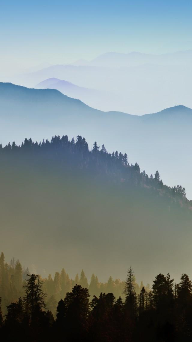 Yosemite, 5k, 4k Wallpaper, 8k, Forest, Osx, Apple, - Hill Stations Wallpaper For Mobile - HD Wallpaper