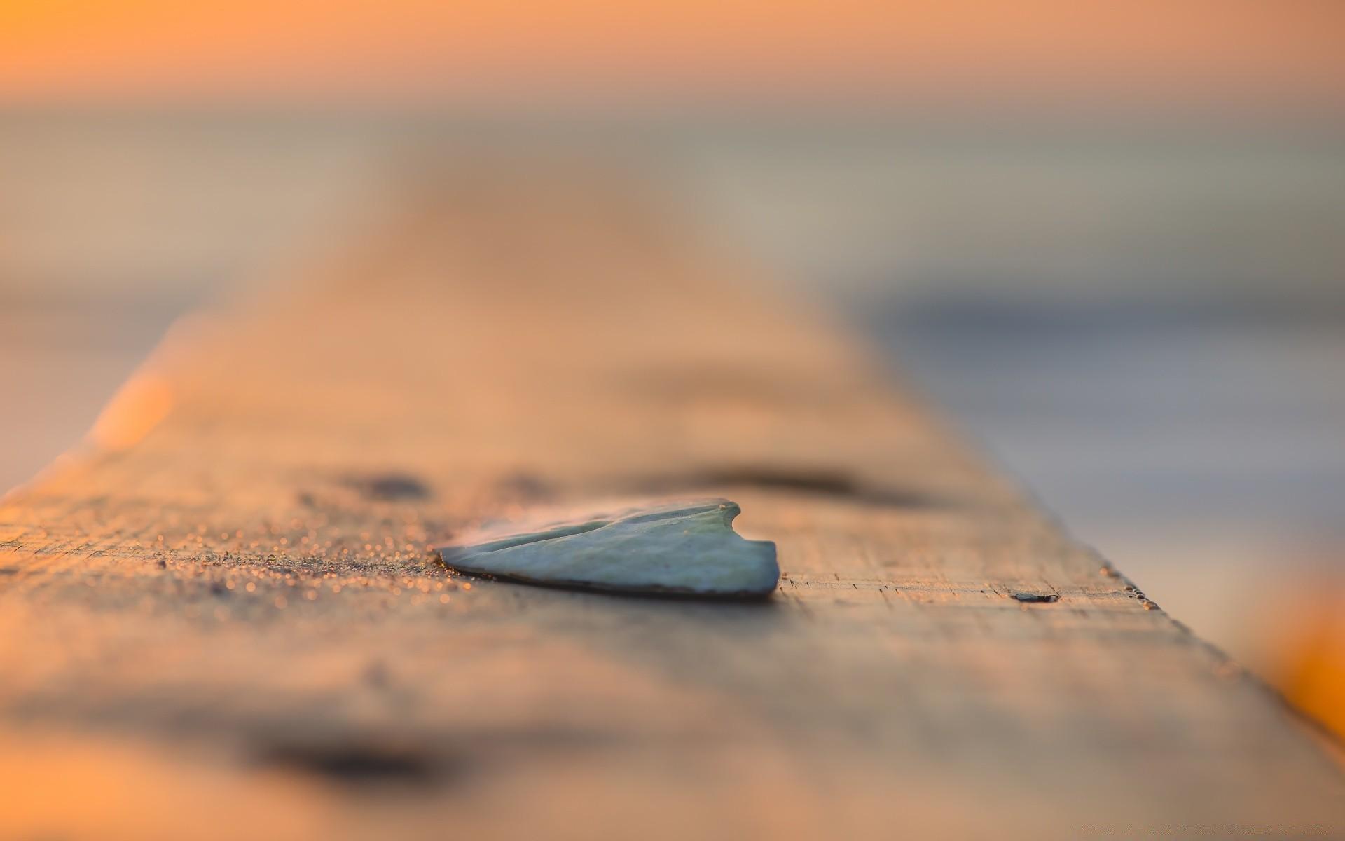 Macro Beach Sunset Sand Water Seashore Dawn Sun Blur - Sea - HD Wallpaper